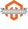 Magento Professional Solutions Partner