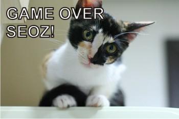 Game Over SEOz!