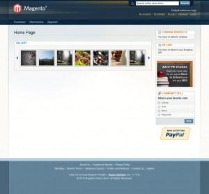 inchoo-flickr-gallery-homepage-carousel