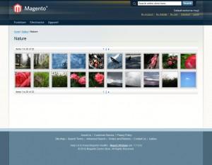 inchoo-flickr-gallery-photoset