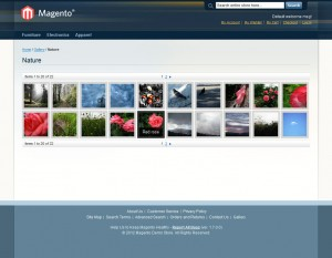 inchoo-flickr-gallery-photoset-hover