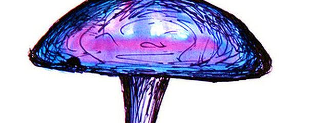 2013_01_13_purple-push-pin