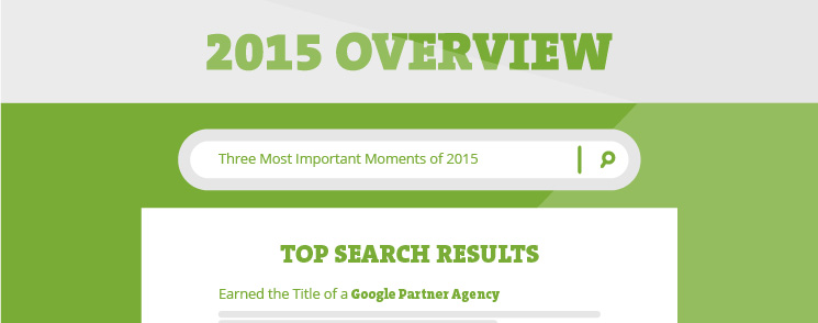 2015 Overview in Infographics