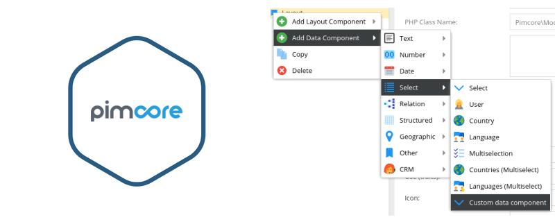 pimcore-custom-data-component2