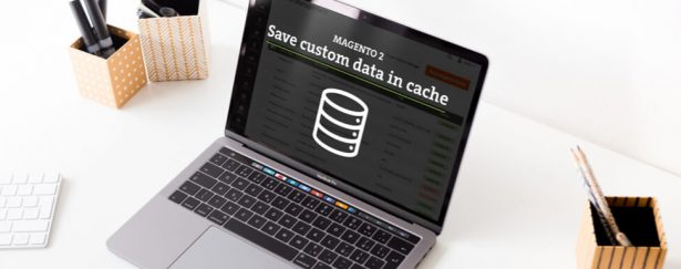 How to save custom data in cache in Magento 2