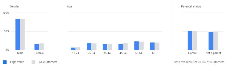 customer value report demographics example 3